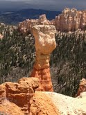 more hoodoos at Bryce
